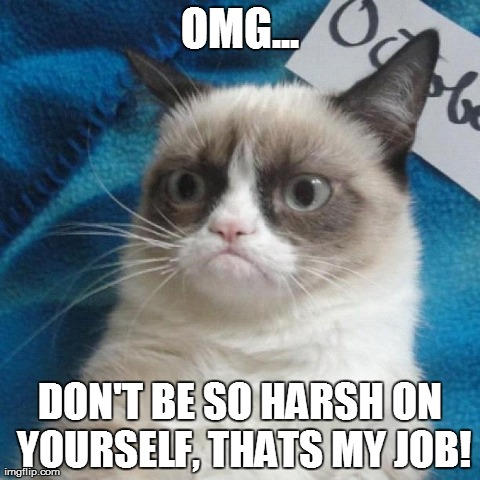 Grumpy cat - inner nasty 2